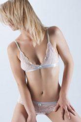 Bree Model